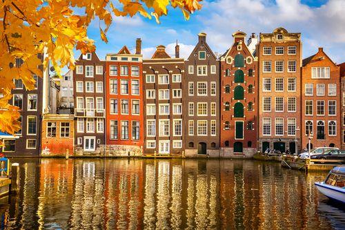 לימודי הולנדית