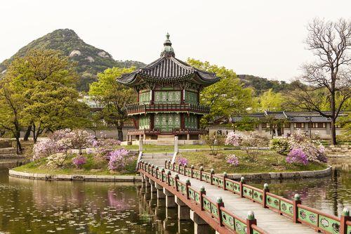 לימודי קוריאנית